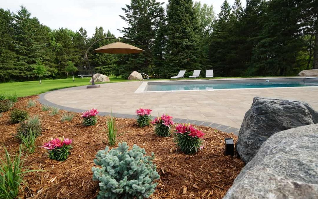Landscaping Trends to Look Forward to in 2021